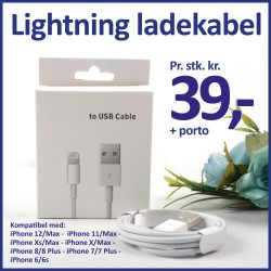 21ee Lightning ladekabel