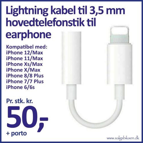 21e iPhone adapter
